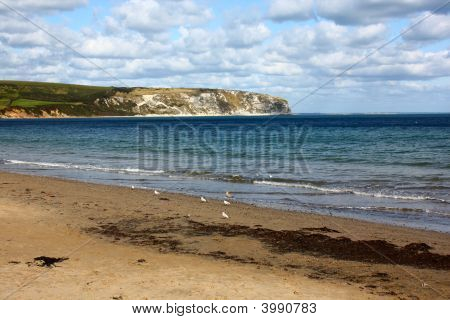 Swanage Beach And Dorset Cliffs