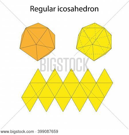 Icosahedron With Net. Regular Polyhedron. Vector Illustration.