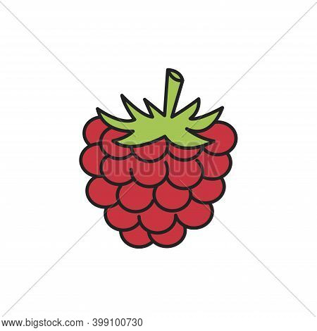 Raspberry, Simple Vector Icon, Filled Outline. Raspberry