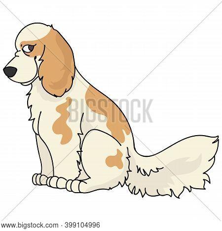 Cute Cartoon Cocker Spaniel Sitting Dog Vector Clipart. Pedigree Kennel Doggie Breed For Kennel Club
