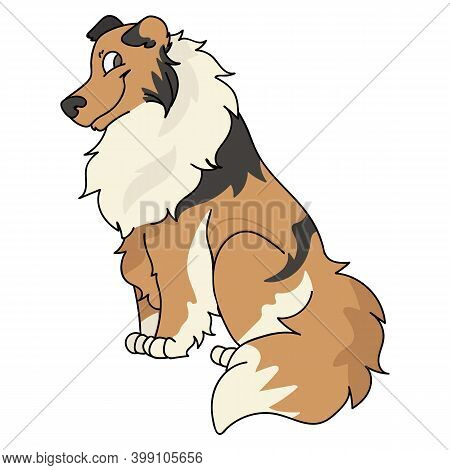 Cute Cartoon Rough Collie Sitting Dog Vector Clipart. Pedigree Kennel Doggie Breed For Kennel Club.
