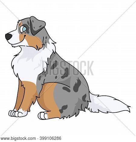 Cute Cartoon Australian Shepherd Sitting Dog Vector Clipart. Pedigree Kennel Doggie Breed For Kennel