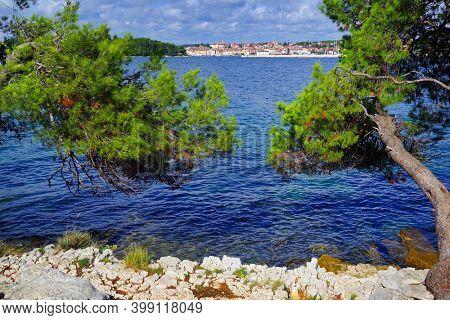 Golden Cape Forest Park, Rovinj (Rovigno) - Istria, Croatia