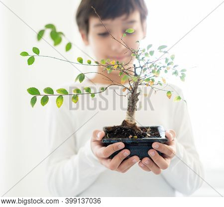 Little boy holding nice small plant tree in hands