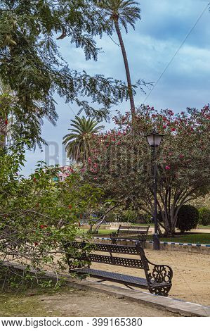Jardines De Murillo In Seville Summer Park Scene