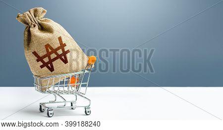 South Korean Won Money Bag In A Shopping Cart. Profits And Super Profits. Minimum Living Wage. Publi