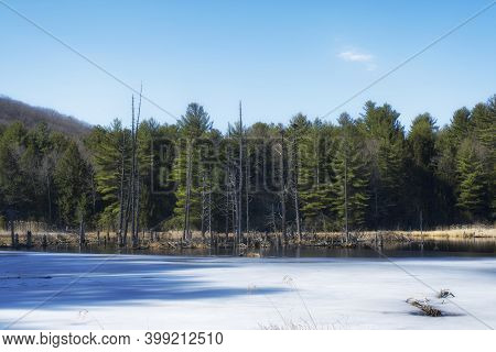 An Icy Pond Within Sunnybrook State Park In Torrington Connecticut On A Late Winter Day In New Engla