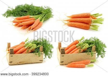 freshly harvested carrots and some in a wooden crate on a white background