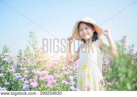 Cute Girl And Michaelmas Daisy Or New York Aster Flower Field, Chiang Mai Most Popular Photography D