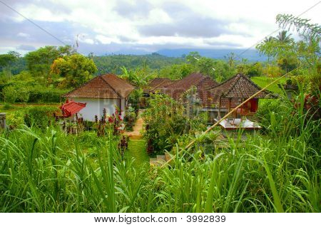 Picturesque Village In Bali