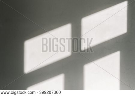 White Wall With Window Shadow. High Quality Photo