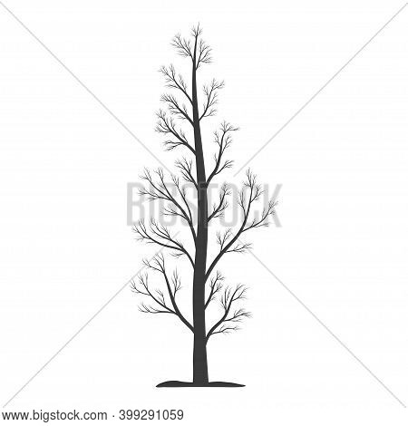 Bare Tree Icon. Tree Trunk With Branchs And Without Leaves. Vector Illustration