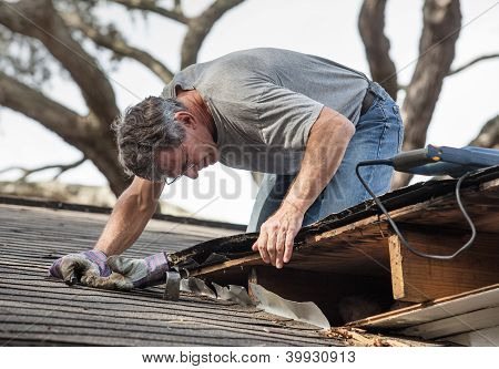 Close up view of man using crowbar and saw to remove rotten wood from leaky roof decking. After removing fascia boards he has discovered that the leak has extended into the beams and decking. poster