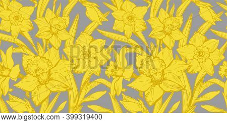 Yellow Illuminating Daffodils Hand Drawn Closeup On Gray Background Ultimate Gray. Floral Seamless P
