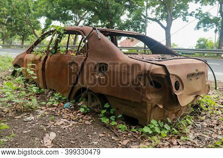 Cars Damaged In Fire On Junkyard. An Old Car Covered In Vines And Pinestraw