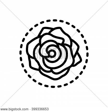 Black Line Icon For Rose Rosa Petals Nature Symbol-of-love Bouquet Love Romantic Horticulture Decora
