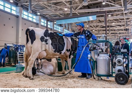 Moscow, Russia - June 01, 2019: Cattle Dairy Exhibition. Man Using Automated Cow Milking Facility Eq