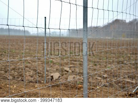 Construction Of Forestry Fencing From Economic Mesh And Galvanized Metal Pipe Posts. Protects Planti