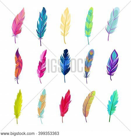 Colored Bird Feathers Set. Bright Green Fluff Design With Red Tints And Soft Blue Contrast Beautiful