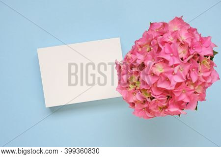 Floral Card With Hydrangea Flowers In Gentle Pastel Colors.pink Hydrangea Flower, White Blank Card O