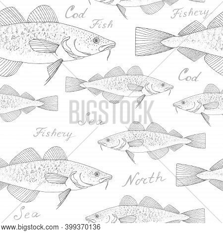 Cod. Black Hand Drawn Realistic Outline Vector Background.