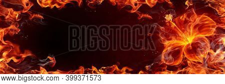 Burning flower made of real fire flames, smoke and sparks. 3d illustration.