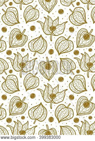 Physalis, Winter Cherry Seamless Pattern, Texture, Background. Greeting Card Design, Template. Ready