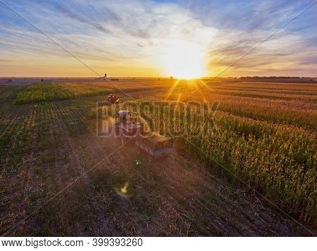 Grain Harvesting.\nharvesting Of Sorghum. Combine Harvesters Agricultural Machines Collecting Sorghu
