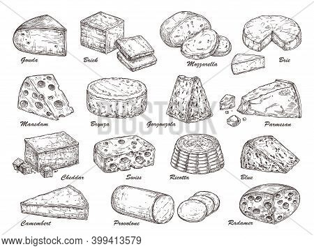 Sketch Cheese. Hand Drawn Product, Holland Tasty Dairy Cuisine Food. Isolated Parmesan Piece, Chedda