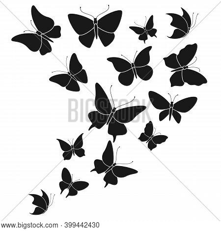 Butterfly Black Silhouettes. Fly Butterflies Wedding Decor Elements, Abstract Flying Beautiful Fores
