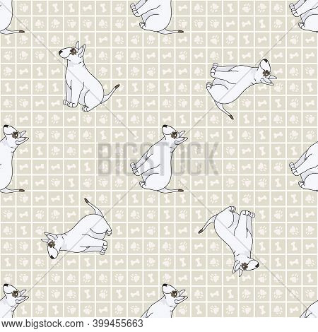 Cute Cartoon Bull Terrier Sitting Vector Clipart. Pedigree Kennel Dog Breed For Obedience Training.