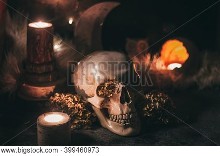 Occult Mystic Ritual Halloween Witchcraft Scene - Human Scull, Candles, Dried Flowers, Moon And Owl.