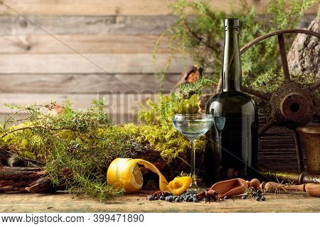 Gin In A Small Glass And An Antique Bottle Of Dark Glass. Anise, Coriander, And Juniper Berries Are
