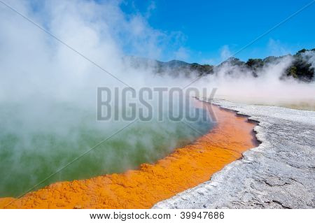Champagne Pool In Wai-o-tapu Geothermal Wonderland, New Zealand
