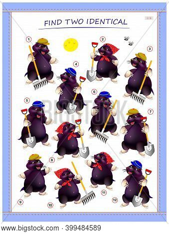 Logic Puzzle Game For Children And Adults. Find Two Identical Moles. Printable Page For Kids Brain T