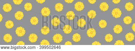 Calendula Or Marigold Flower Pattern In Illuminating Yellow Pantone Color Of The Year 2021 On Ultima