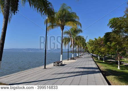 Photo Of The Ajijic Boardwalk, With Lake Chapala In The Background And Some Palms