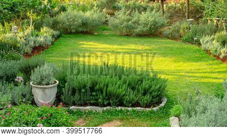 English Cottage Garden On Green Grass Lawn Backyard, Infomal Landscape Decorate With Rosemary Herb,