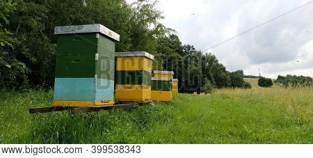 Hives With Bees. Beekeeping. Hives Standing In Nature, And Are Painted Yellow, Green And Blue. Plant