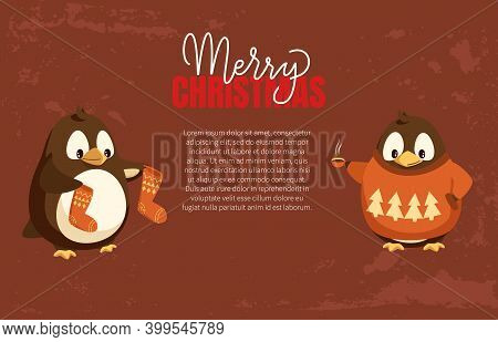 Merry Christmas Penguins In Warm Clothes Text Poster Vector. Bird With Smooth Feathers Holding Socks