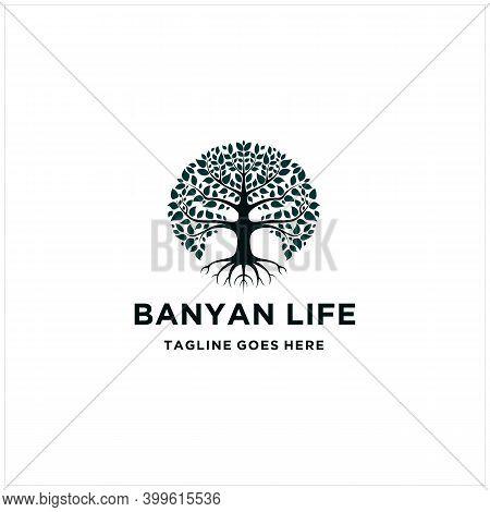 Tree Of Life, Oak Banyan Leaf And Root Logo Design Inspiration