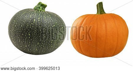Two Fresh Pumpkins Orange And Green On A White Background. Two Small Green And Yellow Ripe Pumpkins