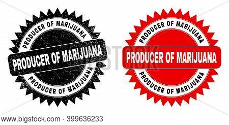 Black Rosette Producer Of Marijuana Seal. Flat Vector Scratched Seal Stamp With Producer Of Marijuan