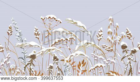 Seamless Horizontal Border With Winter Snow Covered Meadow Plants. Wild Herbs, Cereals Under The Sno