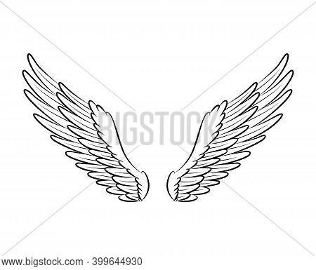 Vintage Heraldic Wings Sketch. Monochrome Stylized Birds Wings. Hand Drawn Contoured Stiker Wing In