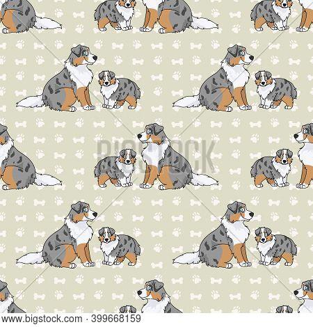 Cute Cartoon Australian Shepherd Sitting Vector Clipart. Pedigree Kennel Dog Breed For Obedience Tra