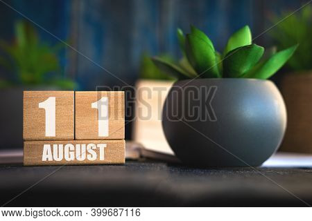 August 11th. Day 11 Of Month, Cube Calendar With Date And Pot With Succulent Placed On Table At Home