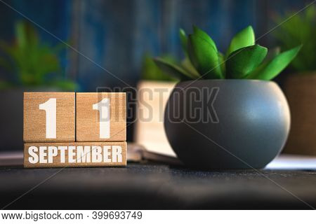 September 11th. Day 11 Of Month, Cube Calendar With Date And Pot With Succulent Placed On Table At H