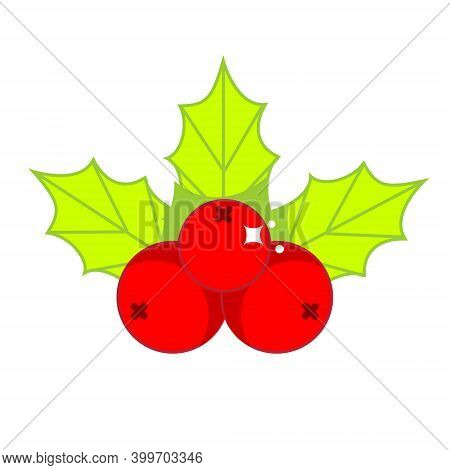 Christmas Holi Ilex Leaves And Berries. Symbol For New Year Decoration