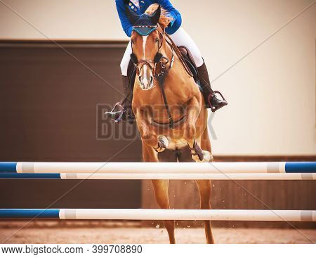 A Sorrel Fast Racehorse With A Rider In The Saddle Jumps Over A High Blue Barrier In A Show Jumping